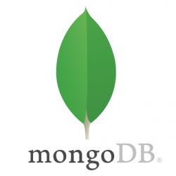 First steps in MongoDB
